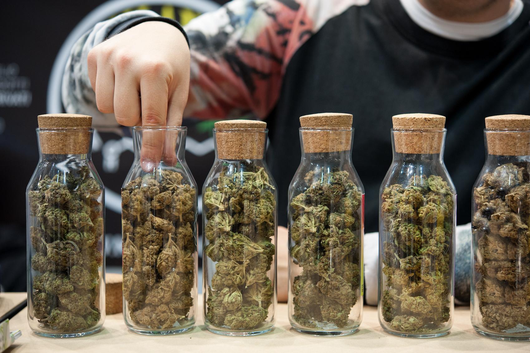 Delta-8 and delta-9 cannabis flower strains